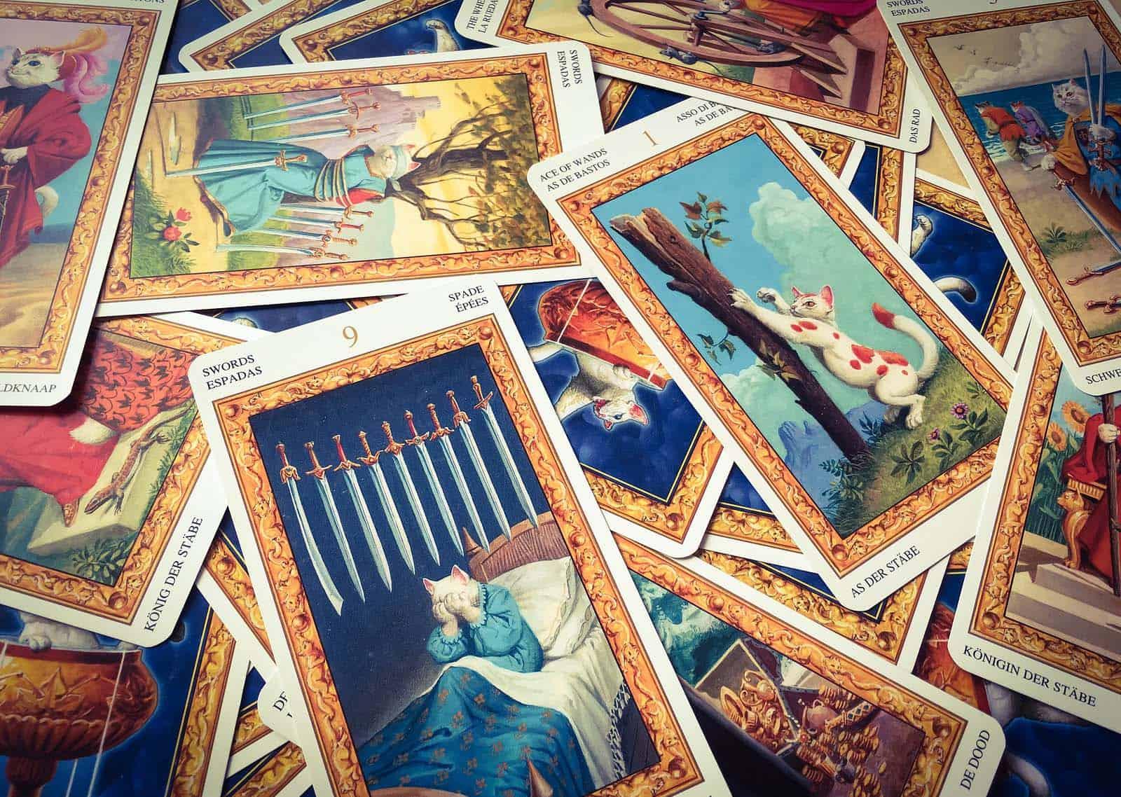 astrolog novi sad